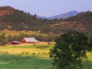 farm and foothills